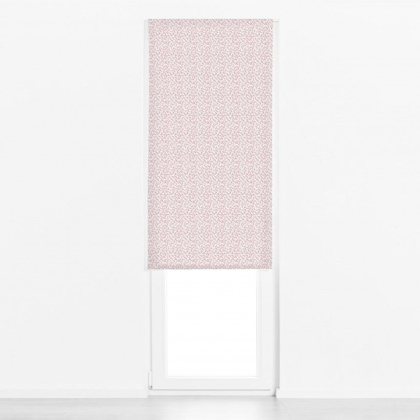 Roman blind Dragon Fruit