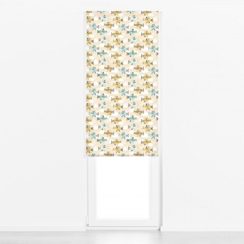 Roman blind These birds want to fly